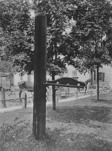 Sussex County Whipping Post in Georgetown