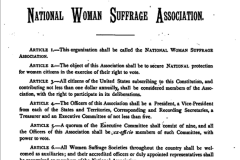 Elizabeth Cady Stanton and Susan B. Anthony found the National Woman Suffrage Association, a more radical institution, to achieve the vote through a Constitutional amendment as well as push for other woman's rights issues. NWSA was based in New York.